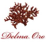 Delma Oro Gioielli